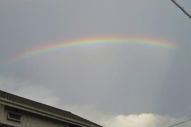 朝の虹_6908