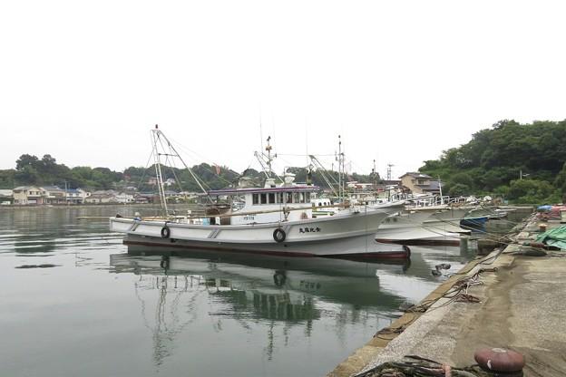 深江漁港_7181