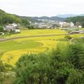 Photos: 田園風景_7656