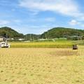 Photos: 稲刈り_7958