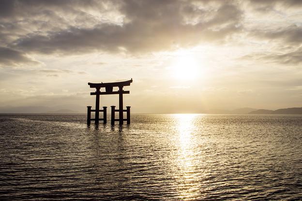 Photos: 白鬚神社2