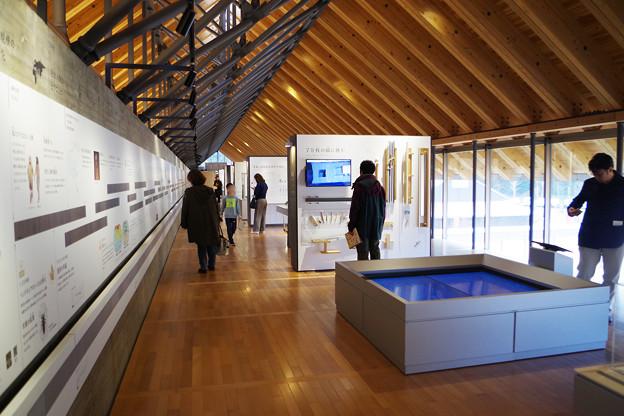 年縞博物館12