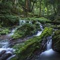 Photos: 瓜割の滝