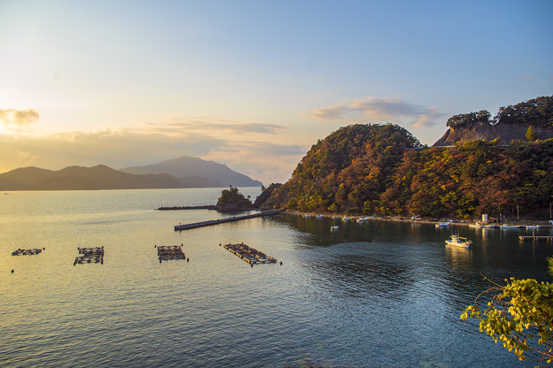 Photos: 夕刻の若狭湾