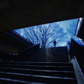 Photos: 空への入り口