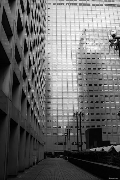 Photos: 東京ビル