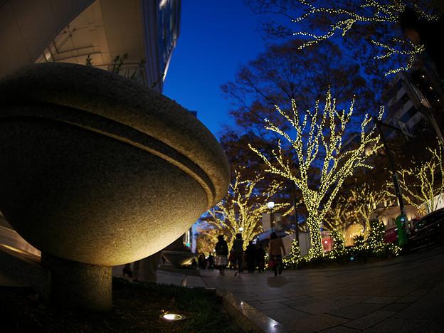 Photos: 181130_東京・表参道_イルミネーション_G181130XA9341_MZD8FP_X9Ss