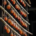 181201_横浜市中区・三溪園_旧矢箆原家住宅_F181201I2733_MZD60M_FH_C-SG_FS3_X9Ss