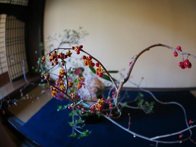 Photos: 181201_横浜市中区・三溪園_旧矢箆原家住宅_E181201D8513_MZD8FP_X9Ss
