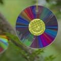 200917_茅ヶ崎・小出川_CD(DVD?/BD?)盤_G200917XW6973_MZD300P_FH_for C-SG_FS1_X10Ss