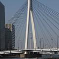 写真: スカイツリーより大きな橋