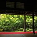 Photos: 圓光寺1