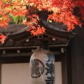 Photos: 東禅寺2