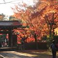 Photos: 東禅寺3