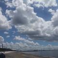 Photos: 夏の雲