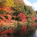 Photos: 秋景色