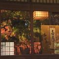 Photos: 茶室の紅葉