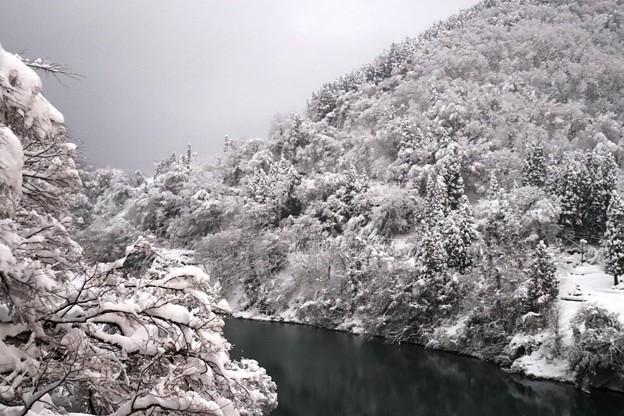 猪谷駅周辺 雪景色