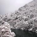 写真: 猪谷駅周辺 雪景色