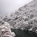 Photos: 猪谷駅周辺 雪景色