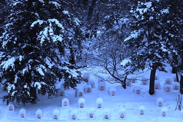 弘前城雪灯篭まつり