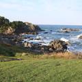 写真: 種差海岸