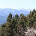 Photos: ハイキング02