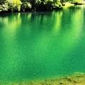 Photos: 白丸湖