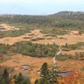 Photos: 八甲田山の紅葉