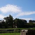 何となく撮った雲