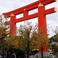 Photos: 平安神宮の鳥居