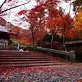 紅葉2018 鍬山神社 03