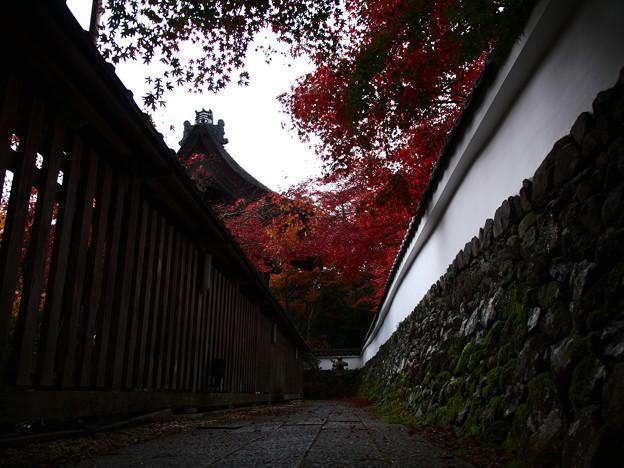 紅葉2018 鍬山神社 09