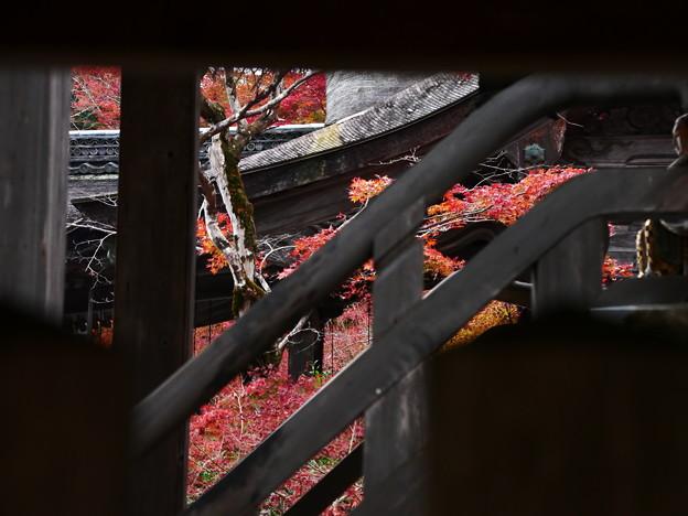紅葉2018 鍬山神社 11