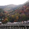 紅葉2018 嵐山 01