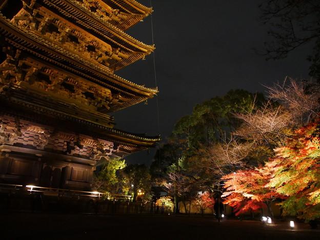 Photos: 紅葉2018 東寺 07