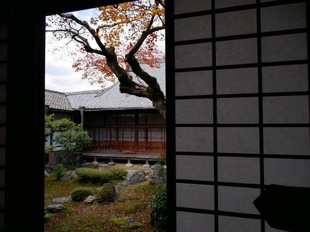 醍醐寺三宝院 紅葉2019 04