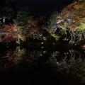 高台寺ライトアップ 紅葉2019 01
