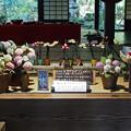 加茂荘 このような展示もありました