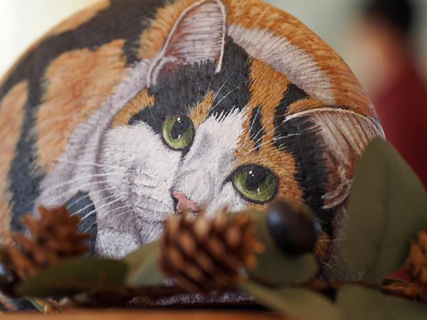 石猫と松ぼっくり