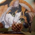 Photos: 石猫と松ぼっくり