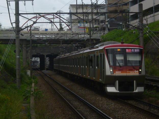 P1030231