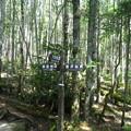 写真: 唐沢鉱泉分岐