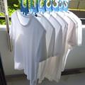 Photos: 白いTシャツ
