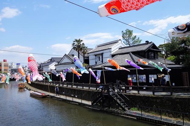 倉の町と鯉のぼり