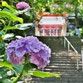 高崎清水寺