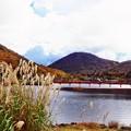 写真: 赤城山大沼2