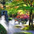 写真: 徳明院の紅葉