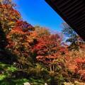 吉祥寺裏山の眺め