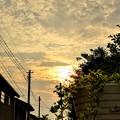 Photos: 静かな夕暮れ